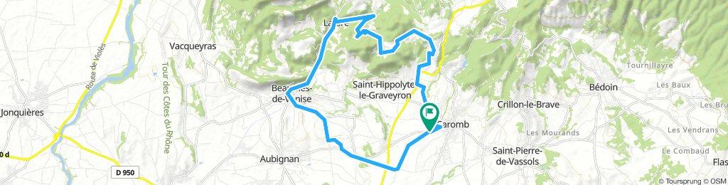 La Syrah (Caromb) - La Roque Alric