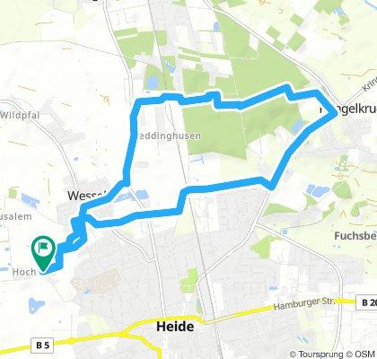 Heide - Weddingstedt - Ostrohe