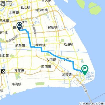 Disney Jinjiang Hotel to Lingang