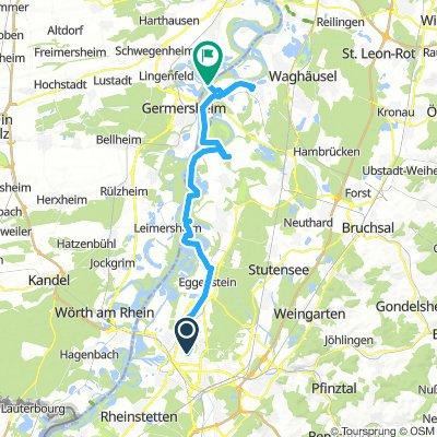 östliche Altrheinschleifen nahe am Fluß KA-Philippsburg