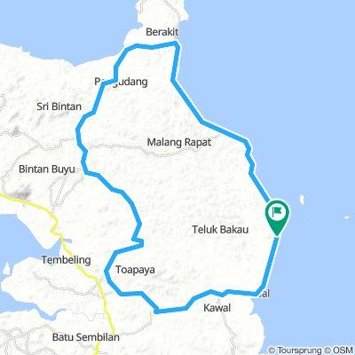 north East Bintan