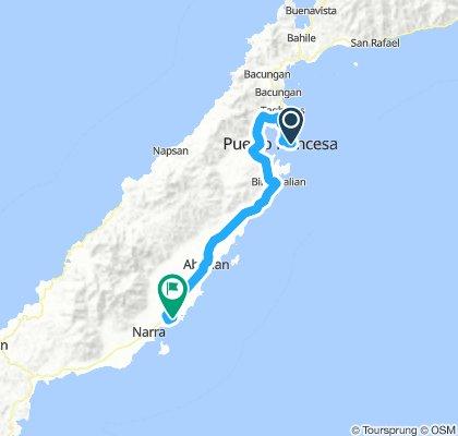 Puerto Princesa -  Narra