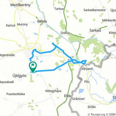 W3: Wenckheim kerékpáros körtúra: Szabadkígyós -  Békéscsaba -  Gerla - Gyulavári