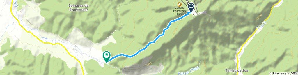 Valea Seaca Postavaru