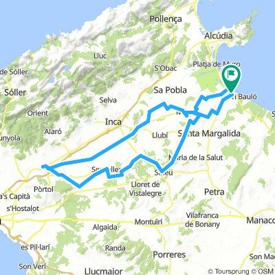 Can Picafort -Santa Maria del Cami-101-470