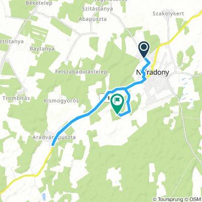 Steady Morning Course In Nyíradony