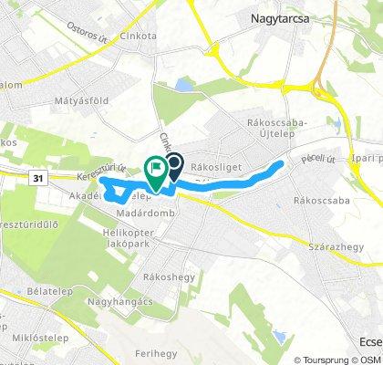 Extensive Morning Track In Budapest Xvii. Kerület