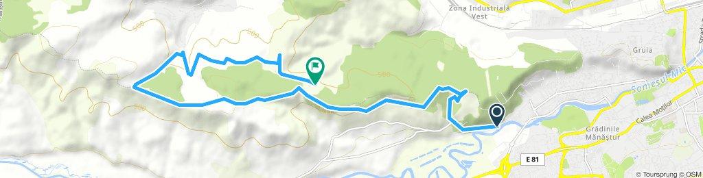 Traseu Hoia Suceag