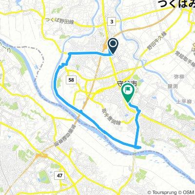 Night Ride Shin Moriya to Minami Moriya the long way.