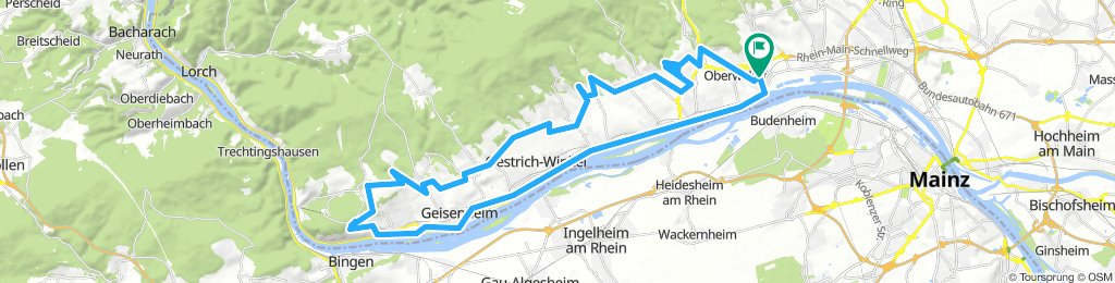 Niederwalluf - Weinberge - Niederwald