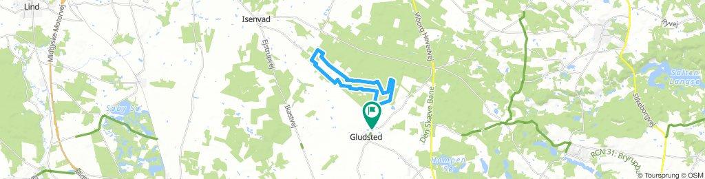 Gludsted MTB rute