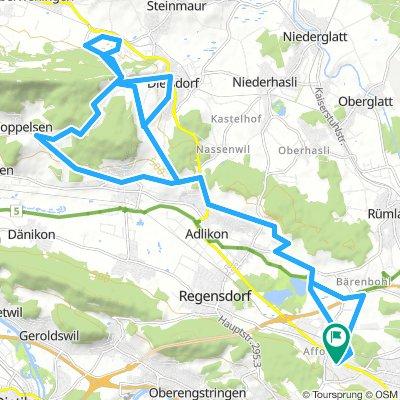 Dreierlei Regensberg von Zürich aus