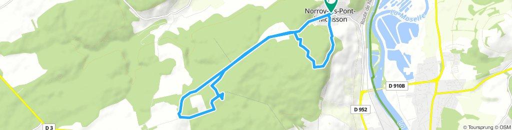 Forêt de Norroy