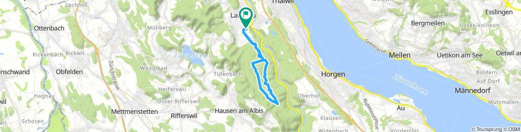 Long Sonntag Course In Langnau Am Albis