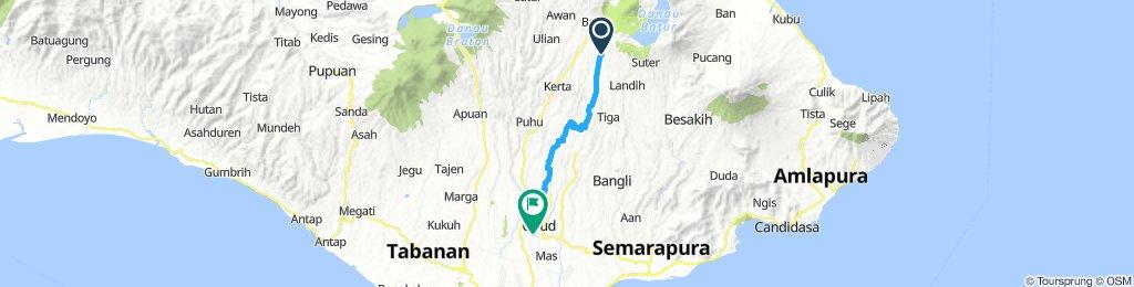 Sekaan - Monkey Forest Ubud