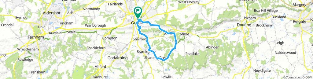 Albury, Farley Green, Shamley Green