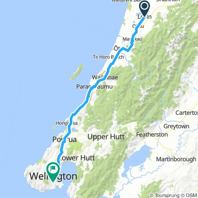 7. Tag Levin - Wellington