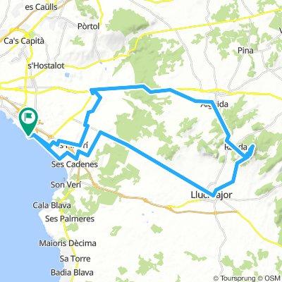 Palma-Santuari del Cura-Palma