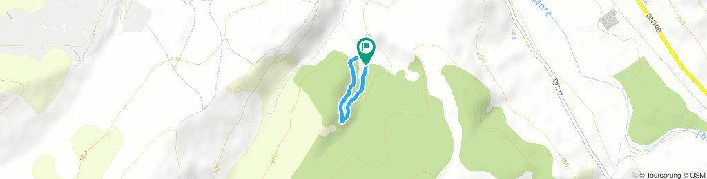 Carbunari-Traseu nr 1