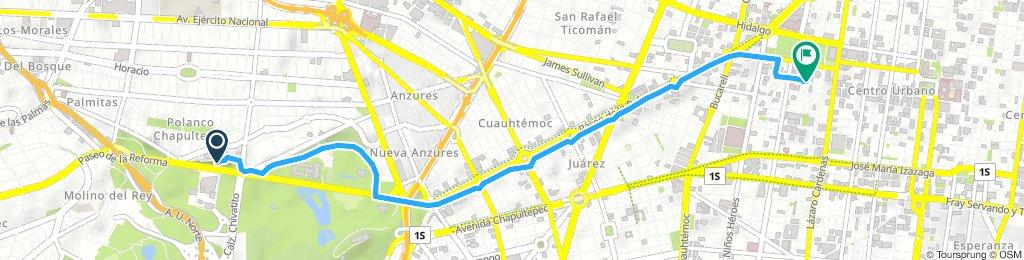 Extensive Lunes Route In Ciudad De México