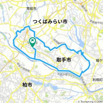 Moriya-Toride Circuit