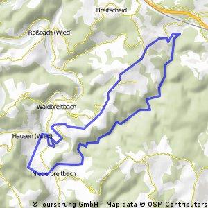 2010-04-29