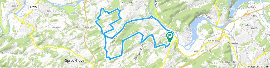Sandberg-Frauenheim-Rauendahl-Herbede-Elbsche-Ruhrradweg-zurück