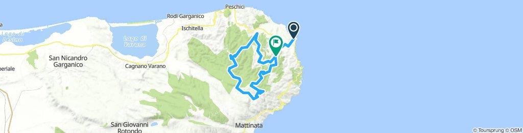 02/12/2018: Giro in MTB tra il bosco di Vieste e la Foresta Umbra