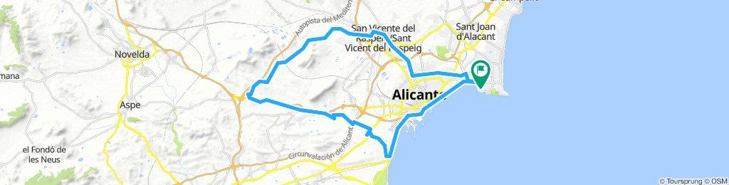 Alicante 5