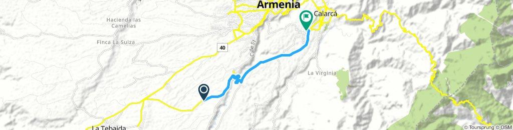 el caimo armenia