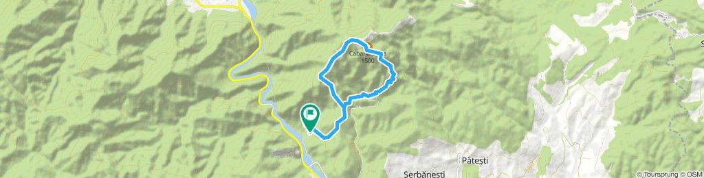cozia hike