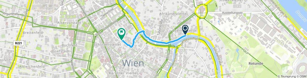 Slow ride in Vienna
