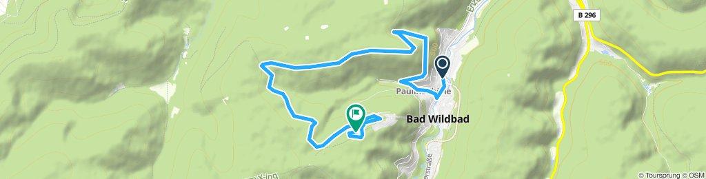 EDEKA FEDELE CHALLENGE - Trail Run