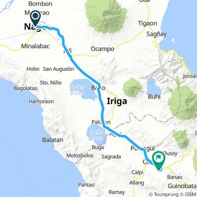 J09 - vendredi 18 janvier 2019 - Naga - Ligao