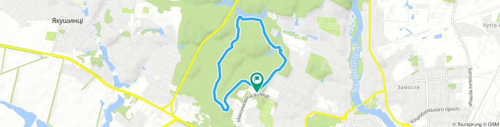 лісопарк, зимня прогулка на лижах 28.01.19