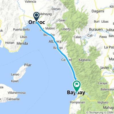 J21 - mercredi 30 janvier 2019 - Ormoc - Baybay