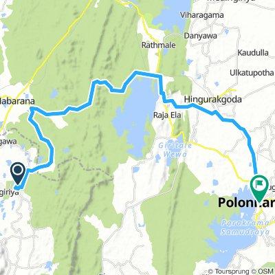 sigiriya polonn2