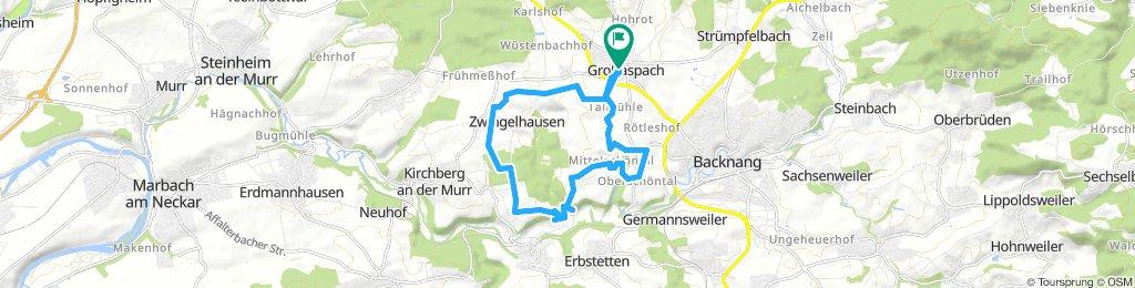 Zwingelhausen