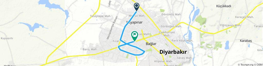Using the bike lanes in Diyarbakır (mostly)