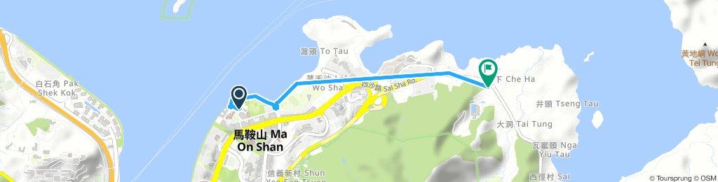 Ma On Shan to Che Ha
