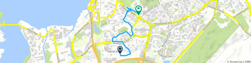 Moderate route in Woodlands