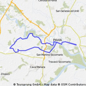 Pavia Carbonara Ticino