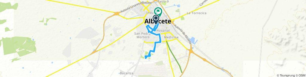 Pulgosa Albacete