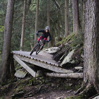 Wiesenalm Trail