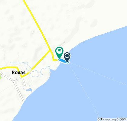 J70C - mercredi 20 mars 2019 – Port de Roxas – Roxas hôtel
