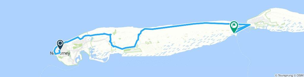 Wanderung zum Wrack Norderney