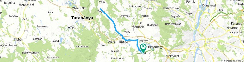 Etyek - Bicske - Tarján 64.5km 2019.03.24.