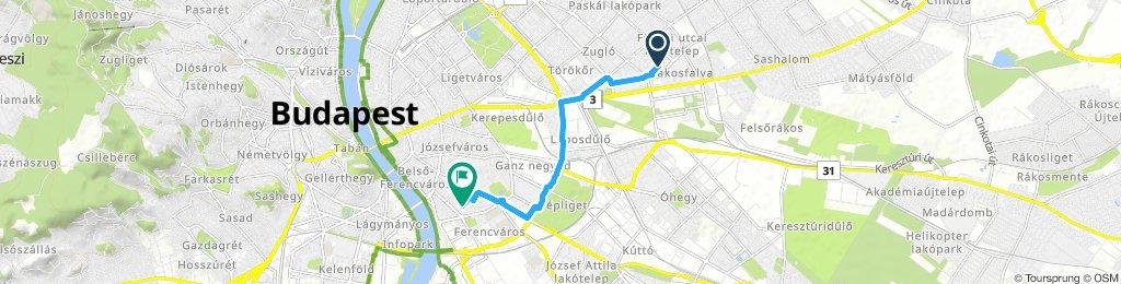 Slow ride in Budapest IX. kerület