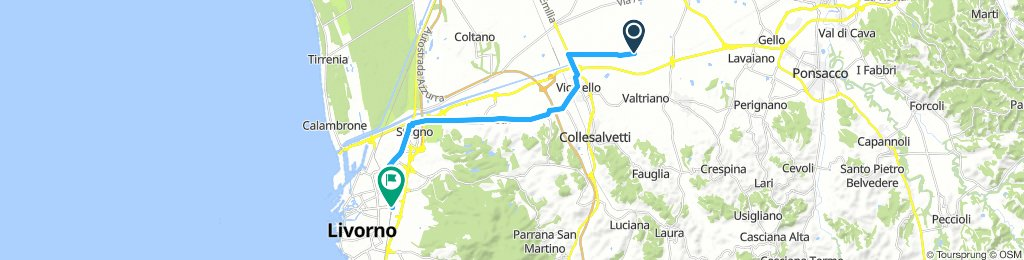 VIRGO-Livorno