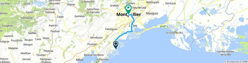 Les Aresquiers - Montpellier